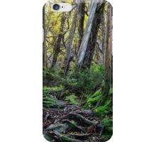 Escaping the Dark Heart iPhone Case/Skin