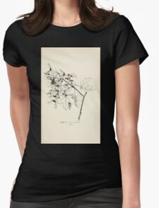 Southern wild flowers and trees together with shrubs vines Alice Lounsberry 1901 102 Acer Leucoderme Womens Fitted T-Shirt