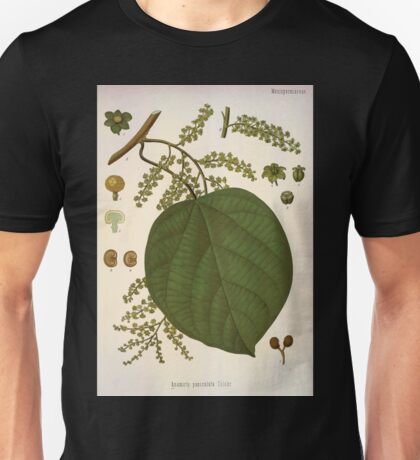 Köhler's Medizinal Pflanzen in naturgetreuen Abbildungen mit kurz erläuterndem Texte  Atlas zur Pharmacopoea 1883 1914 V2 087 Anamirta Paniculata Unisex T-Shirt