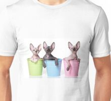 Cute Bald sphinx cat kitten Unisex T-Shirt