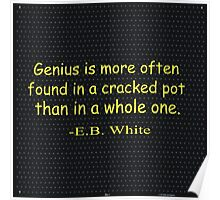 Genius is more often found in a cracked pot than in a whole one. -E.B. White Poster