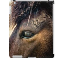 Spirit of The New Forest iPad Case/Skin