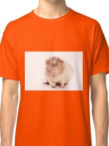 Sweet red guinea pig Classic T-Shirt