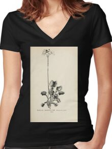 Southern wild flowers and trees together with shrubs vines Alice Lounsberry 1901 062 Venus Fly Trap Women's Fitted V-Neck T-Shirt
