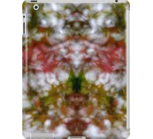 Abstract kaleidoscope figure and faces iPad Case/Skin