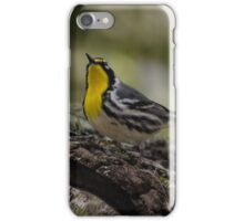 Yellow-throated Warbler iPhone Case/Skin