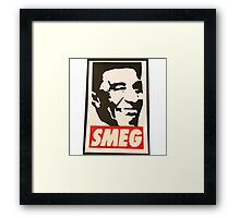 Red Dwarf Smeg Cat  Framed Print