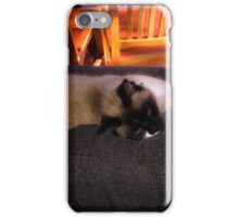 Well meow there Mr Jude iPhone Case/Skin