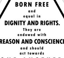 UN Declaration of Human Rights Sticker