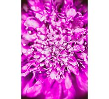 Abstract Flower 2 Photographic Print