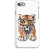 Playful Tiger Cub 907 iPhone Case/Skin