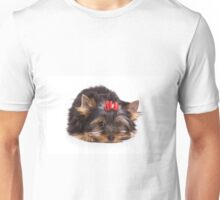Pretty glamorous dog puppy Yorkshire Terrier Unisex T-Shirt