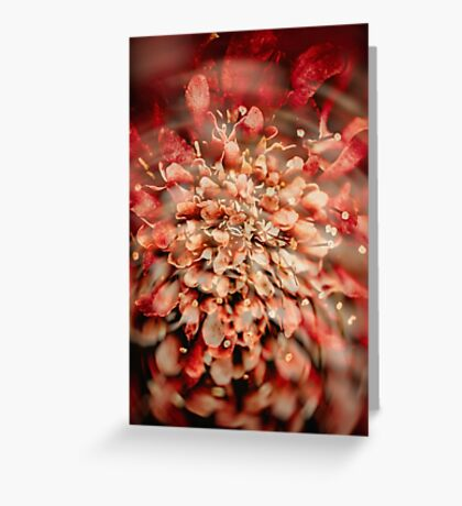 Abstract Flower 3 Greeting Card