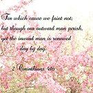 II Corinthians 4:16 by Pauline Evans