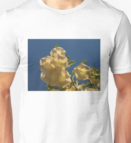 Angel Trumpets in the Sky - Take 2 Unisex T-Shirt