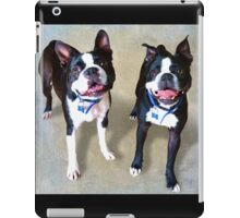 """Levi & Lenny"" iPad Case/Skin"