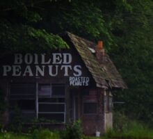 Boiled peanuts shack Sticker