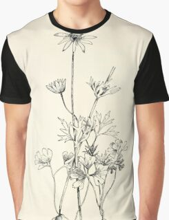 Southern wild flowers and trees together with shrubs vines Alice Lounsberry 1901 056 Carolina Anemone Graphic T-Shirt