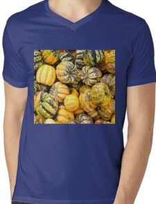 Pumpkin Mens V-Neck T-Shirt