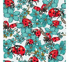 Happy Ladybugs with flowers Photographic Print