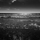 Walberswick Beach by David Hawkins-Weeks