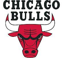 Chicago Bulls Photographic Print