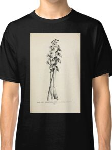 Southern wild flowers and trees together with shrubs vines Alice Lounsberry 1901 032 Large Coral Root Classic T-Shirt