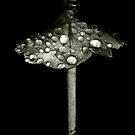 Umbrella by iamelmana