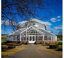Glasgow Winter Gardens Portrait Photographic Print