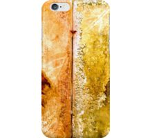 Earth Songs...This is the Way... iPhone Case/Skin