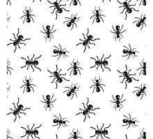 Ant colony insect pattern. Photographic Print