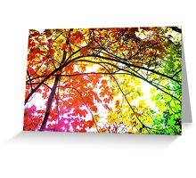 Enchanting Forest... Greeting Card