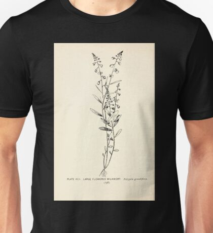 Southern wild flowers and trees together with shrubs vines Alice Lounsberry 1901 092 Large Flowered Milkwort Unisex T-Shirt
