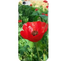 Poppies Dreamy Flowers iPhone Case/Skin