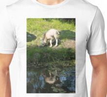 Cute Little Lamb, Reflected Unisex T-Shirt