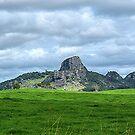 Mt. Taratara, Northland , New Zealand.........! by Roy  Massicks
