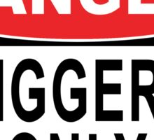 Danger - Riggers Only Sticker