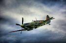 Supermarine Spitfire Mk IX by Nigel Bangert