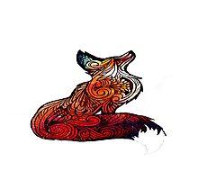 fox space Photographic Print