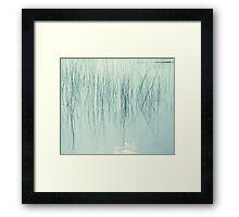 Whisps Framed Print
