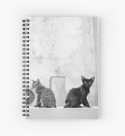 Young Cats Buddy, Back to Back Spiral Notebook