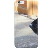 Black Lab In The Snow iPhone Case/Skin