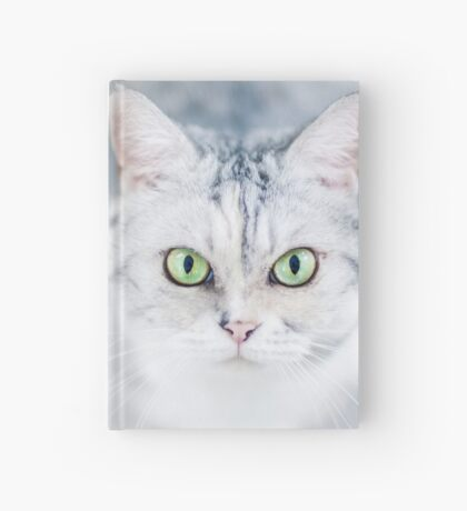 Silver Cat, Close Up, Looking Hardcover Journal