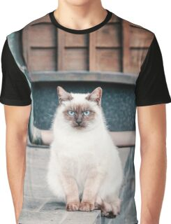 Cat, Aso, Temple Graphic T-Shirt