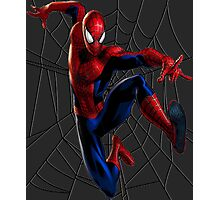 Spider-Man WEB Photographic Print