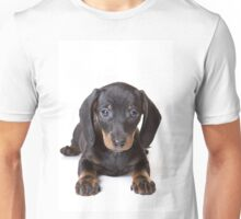 Charming cute dachshund puppy dog Unisex T-Shirt