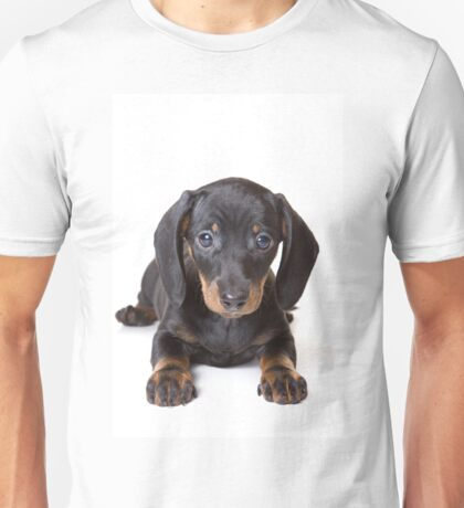 Charming cute dachshund puppy dog Unisex T-Shirt