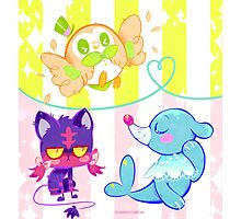 New Starters Photographic Print