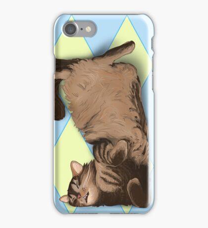 Cat in a Box iPhone Case/Skin