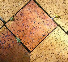 Brick by brick by Robyn Williams